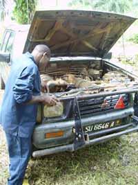 Un véhicule 4x4 pour les Pygmées